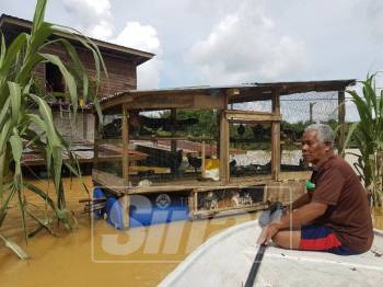 Abu Bakar mememeriksa keadaan reban terapung yang terletak bersebelahan rumahnya di Kampung Tebak.