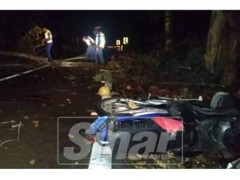 Pokok tumbang mengakibatkan seorang penunggang motosikal cedera di kepala.