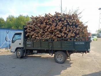 PPM W1 Langkawi rampas kayu getah, lori melalui Ops Landai.