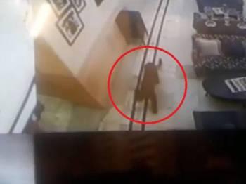 Imej rakaman CCTV menunjukkan haiwan terbabit berlegar-legar di lobi hotel.