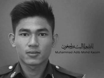 Muhammad Adib Mohd Kasim
