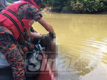 Mayat lelaki dijumpai dalam keadaan separuh badan di Sungai Ladang, Sime Darby, Kampung Segaliud, Batu 34, Sandakan hari ini