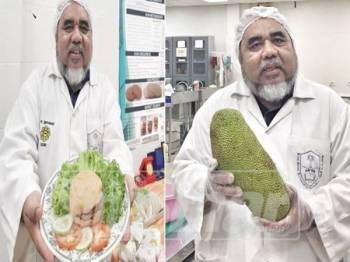 Dr Ibrahim menunjukkan burger buah nangka yang telah dijual dipasaraya, selepas lebih enam tahun membuat penyelidikan.