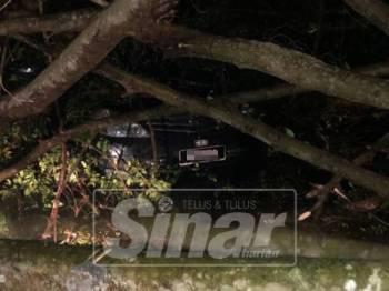Sebuah kereta ditimpa pokok tumbang