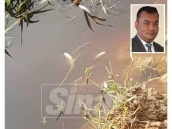 Beberapa ekor ikan ditemui mati di sungai Ulu Benut. (Gambar kecil: Mohammad Ezanni)