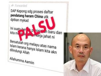 Kenyataan palsu yang ditularkan di media sosial (Gambar kecil: Lim Lip Eng)