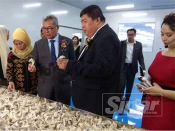 Mohd Redzuan (tiga dari kiri) dan Huai Gen (dua dari kanan) melihat sarang burung walit yang belum diproses ketika lawatan ke kilang MyNest Group Malaysia.