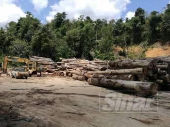 Longgokan kayu balak yang ditebang dari Hutan Simpan Air Chepam Hulu Perak, Gerik.