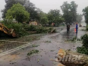 Pokok tumbang akibat ribut di hadapan SMK Kepala Batas semalam.