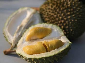 Penang Durian Fest, pesta durian tahunan Pulau Pinang yang akan diadakan dari 5 hingga 7 Julai ini.