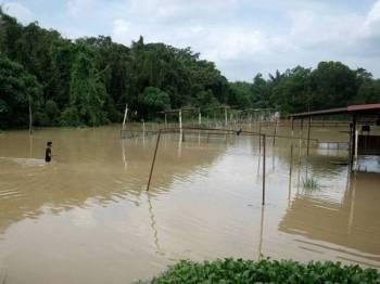 Seorang remaja terpaksa meredah air sedalam kira-kira satu meter untuk ke kawasan gerainya yang telah ditenggelami air akibat banjir kilat dekat Melaka Pindah, hari ini. - Foto BERNAMA