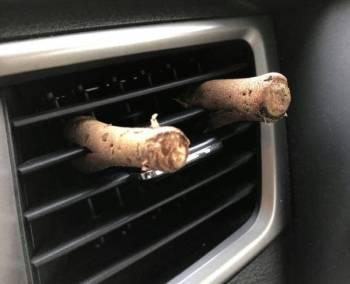 Tangkai durian diletakkan pada corong pendingin hawa kereta untuk menghilangkan bau durian.
