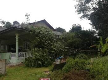 Antara rumah musnah dalam satu kejadian ribut petang semalam. FOTO - Ihsan APM