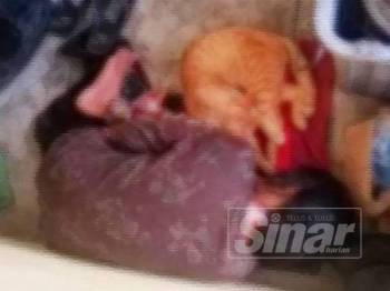 Gambar remaja perempuan OKU yang dipaksa tidur di luar rumah tular sejak semalam.