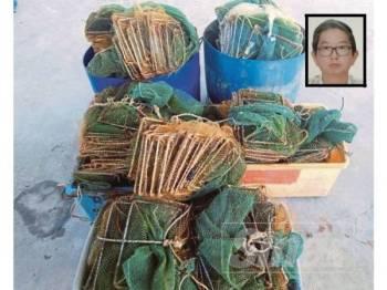 Penggunaan bubu naga semakin berleluasa di negeri Perak. Gambar kecil, Swe Koon.