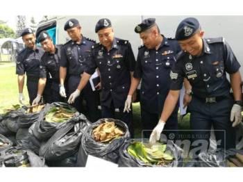 Wan Fauzi (tiga dari kanan) menunjukkan daun ketum dirampas di Ibu Pejabat Polis Daerah Kuala Krai hari ini.