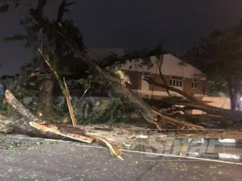Pokok tumbang menghempap sebuah rumah di kawasan Greenlane dalam kejadian ribut malam ini.
