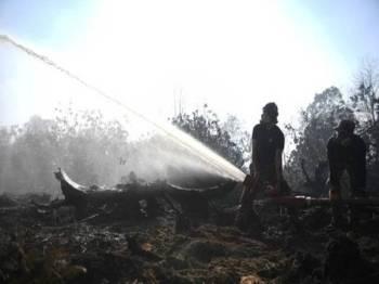 Kebakaran hutan Bukit Palas bermula sejak seminggu lalu. - Foto fail Bernama