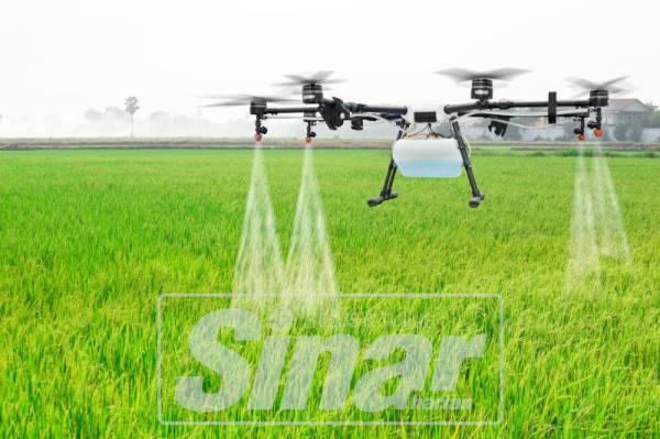 DRON pertanian membantu kerja penyiraman air, taburan baja dan semburan racun lebih cepat.