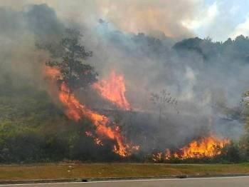 Anggota Bomba dan Penyelamat memadamkan kebakaran melibatkan kawasan seluas 2.4 hektar hutan berbukit berhampiran Taman Tema Legoland dan sebuah hotel di Medini Iskandar Puteri semalam. - Foto Bernama