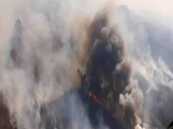 Kebakaran itu merebak secara tidak terkawal di hutan kering tropika Chiquitano selepas tujuan asal untuk membersihkan kawasan pertanian
