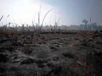 Kawasan di hutan hujan Amazon berhampiran Porto Velho di Rondonia yang musnah terbakar.