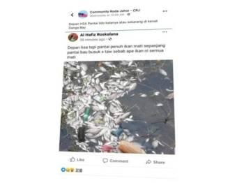 Pautan laman sosial Facebook yang menunjukkan lambakan ikan ditemui mati di sekitar perairan Pantai Lido di sini baru-baru ini.