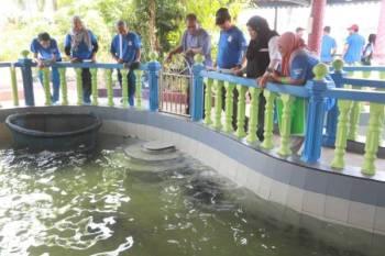Kolam pameran penyu di Pusat Konservasi dan Penerangan Penyu di Cherating ditutup untuk kerja membaiki kemudahan terbabit.