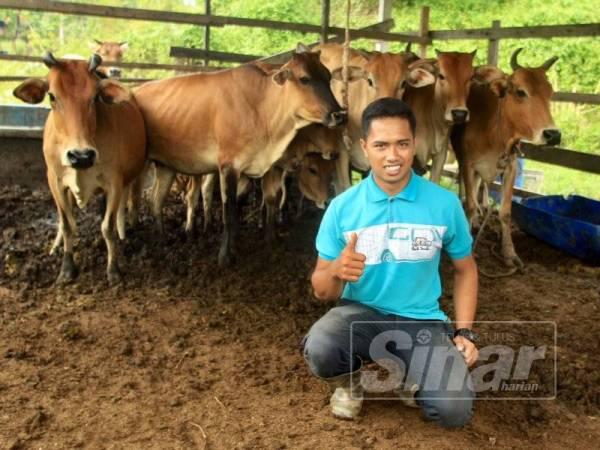 Nurnajmi bangga memiliki perusahaan ternakan lembu. - Foto ZAHID IZZANI