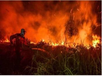 Gambar arkib kejadian kebakaran hutan di lima daerah di Indonesia. - Foto AFP