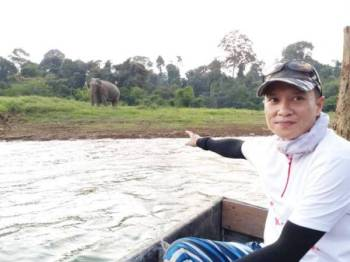 Mohd Suwardi menunjukkan antara gajah yang pernah terserempak dengannya ketika mengikuti aktiviti memancing di Tasik Kenyir.