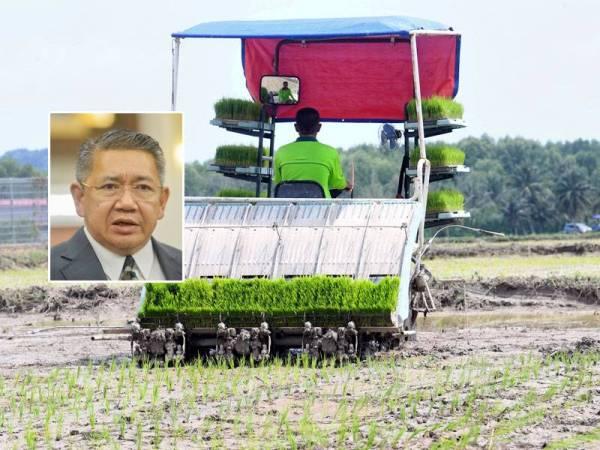 Kerajaan berhasrat menjadikan padi pulut sebagai produk perdana Pulau Langkawi dan dijangka memberi manfaat kepada 1,200 petani. Gambar kecil: Salahuddin Ayub