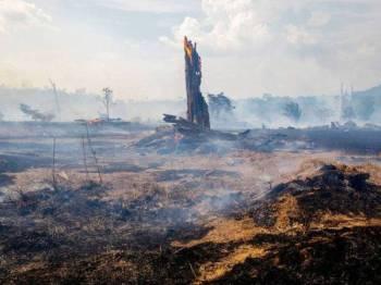 Sebanyak 30,901 kebakaran direkodkan di Amazon pada Ogos lalu.