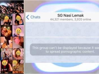 Laman SG Nasi Lemak sudah disekat pihak berkuasa Singapura kerana menyebarkan kandungan lucah.