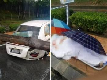 Proton Saga yang remuk di bahagian belakang kereta akibat dihempap pokok tumbang di UM petang tadi. Gambar kanan: Mangsa disahkan maut akibat dihempap pokok sewaktu melalui jalan itu petang tadi. - Foto JBPM KL