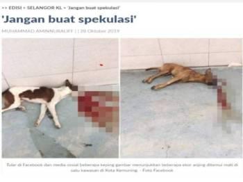 Laporan Sinar Harian berhubung lima ekor anjing ditembak terbiar sehingga mati di Kota Kemuning pada Ahad lalu.