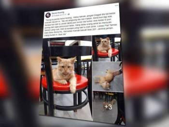 Paparan Facebook Dunia Kucing tular di laman sosial.