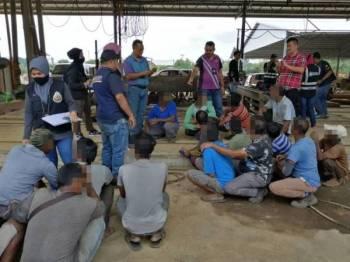 Anggota Jabatan Imigresen Terengganu melakukan pemeriksaan ke atas pekerja warga asing di lokasi serbuan. - Foto: Jabatan Imigresen Terengganu