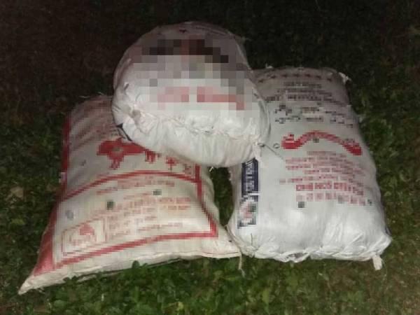 Rampasan kedua membabitkan 84 kg daun ketum yang diisi dalam tiga guni bernilai RM12,600 berdekatan stesen KTM Padang Besar.