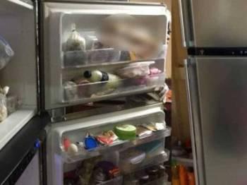 Mayat ibu disumbat dalam peti ais.