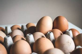 KULIT telur wajib dibasuk jika diyakini ada najis.