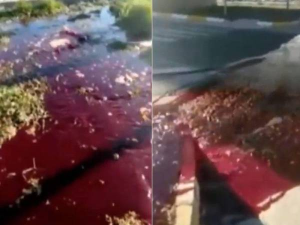 Air berwarna merah yang mengalir di Turki selepas dilanda gempa bumi berukuran 6.8 magnitud pada bulan lalu.