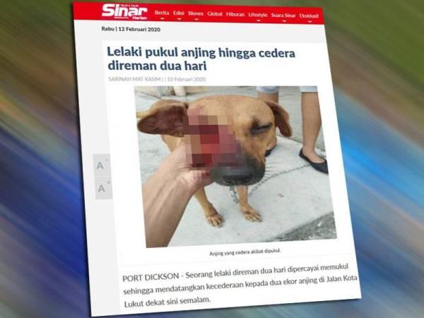 Paparan skrin laporan berita sebelum ini.