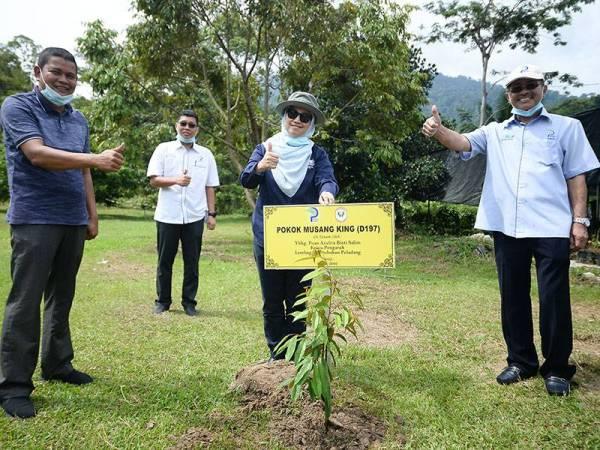 Azulita (dua dari kanan) menanam pokok durian musang king sempena Program Walk-About Ketua Pengarah LPP bersama rakan media di Kampung Pamah Rawas, Ulu Dong dekat Raub semalam.