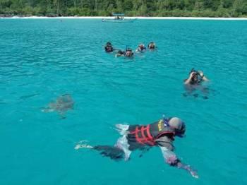 Sebahagian pengunjung yang dibawa untuk melihat dan bermain dengan penyu di Pulau Redang.