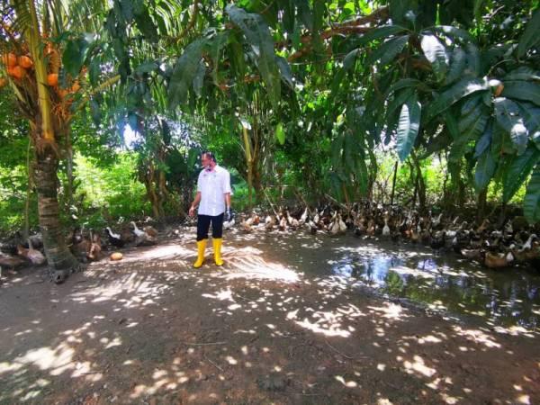 Mohd Salim melawat ternakan itik yang diusahakan Hamzah di Kampung Kota Belud, Kota Belud.
