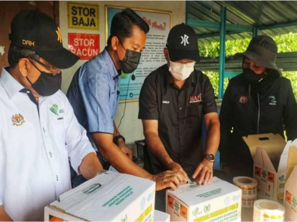 Ronald (dua dari kanan) melekatkan pelekat QR code di kotak Harumanis yang akan dihantar kepada pembeli.