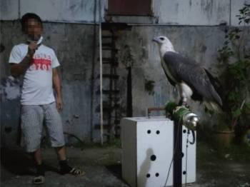 Perhilitan Johor menahan seorang lelaki dan merampas tiga ekor burung daripada spesies yang terancam di rumahnya di Johor Bahru, Isnin lalu.