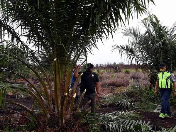 Norddin (kanan) mengetuai operasi memusnahkan pokok kelapa sawit yang ditanam secara haram dalam operasi Penguatkuasaan Hutan Secara Bersepadu (Ops Langat) di kawasan Hutan Simpan Kuala Langat Selatan, Tanjung Sepat pada Isnin. - Foto Bernama