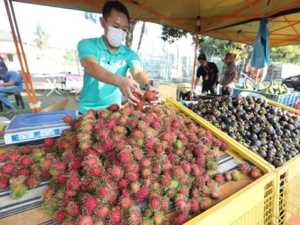 Satu tan manggis dan rambutan turut dijual.